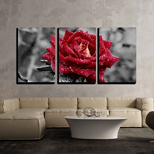 3 Piece Canvas Wall Art - Red Rose on Grey - Modern Home Decor Stretched and Framed