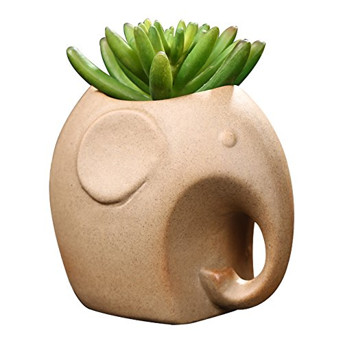 GeLive Pottery Elephant Succulent Planter Decorative Ceramic Plant Flower Pot Container Decorative Vase Garden Cart Window Box Pen Holder - Ceramic Cart
