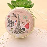 Techonto® Paris Eiffel Tower Skin Zipper Cable Coin Earphone Earbuds Storage Case Carrying Pouch Bag SD Card Holder Mini Box Knitting-Needle Case