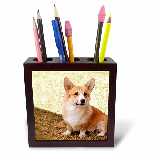 3dRose LLC Pembroke Welsh Corgi 5-Inch Tile Pen Holder (Corgi Tile)