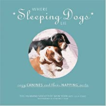 Where Sleeping Dogs Lie: Cozy Canines and Their Napping Nests
