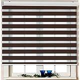 Custom Cut to Size, [Winsharp Basic, Mocha, W 30 x H 55 inch] Horizontal Window Shade Blind Zebra Dual Roller Blinds