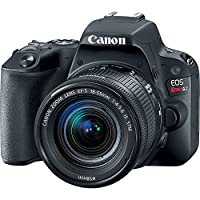 Canon EOS Rebel SL2 DSLR Camera w/ 18-55mm Lens + 2 x 32GB Card + Basic Photo Accessory Bundle by Canon