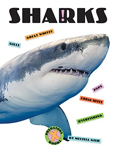 X-Books: Sharks image