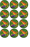 fairy pics - 12 x1.5/38mm Dinosaur edible rice paper fairy / cup cake toppers pre cut decorations by cake pics n parties by post