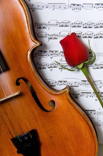 My Heart Is A Violin: The Story Of Shony Alex Braun