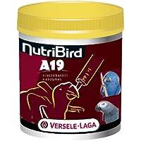 Versele Laga NUTRIBIRD A19 800g, 1er Pack (1 x 0.8 kg)