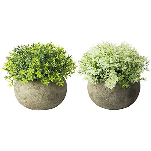 THE BLOOM TIMES 2 Pcs Fake Plant for Bathroom/Home Office Decor, Small Artificial Faux Greenery for House Decorations…