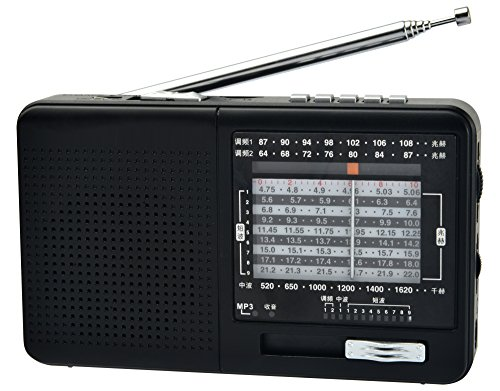 XHDATA D-328 Portable Radio FM AM SW Band Media Speaker MP3 Player Support TF Card (D-328)