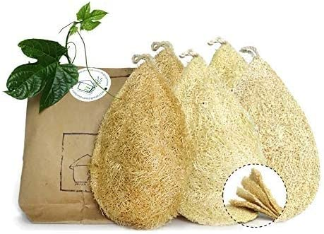 Amazon Com Natural Dish Sponge Pack 5 Vegetable Scrubber For Kitchen Loofah Plant Cellulose Scouring Pad Biodegradable Compostable Dishwashing Zero Waste Product Luffa Loofa Loufa Lufa Dish Sponge Pack 5 Health Personal
