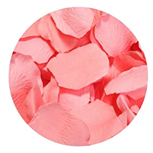 Koyal Wholesale 1000-Pack Silk Rose Petals 40