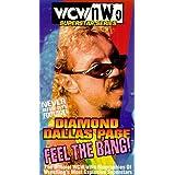 Superstar Series: Diamond Dallas Page