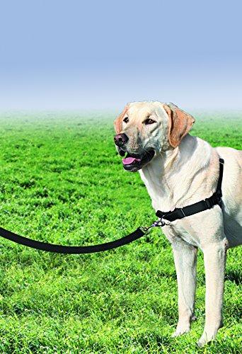 PetSafe Easy Walk Harness Large BLACK/SILVER for Dogs Harnesses Dog