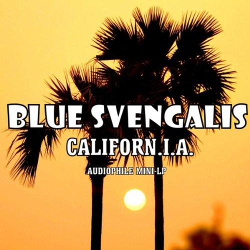 Amazon.com: B-U-N-G-E-E Jump: Blue Svengalis: MP3 Downloads