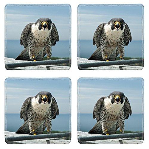 luxlady-square-coaster-marine-parkway-bridge-falcons-natural-rubber-material-image-27341429726