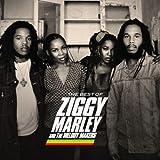 Ziggy Marley Wild And Free Amazon Com Music