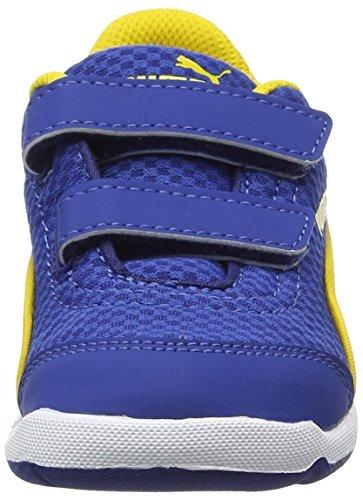 Puma Unisex-Kinder Stepfleex Mesh V Inf Low-Top Blau (true blue-puma white 03)