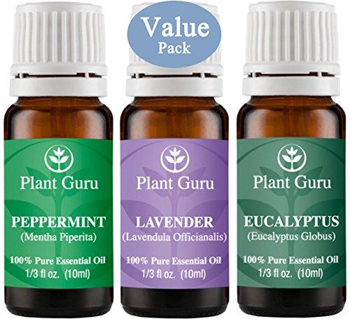 Plant Guru Beginners Essential Therapeutic product image