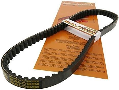 lriemen MALOSSI K Belt - ZIP 50.1Serie (Bj.1991-1994)