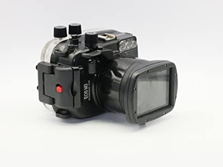 Polaroid P-LWPCEOSM31855 will still be popular in 2018