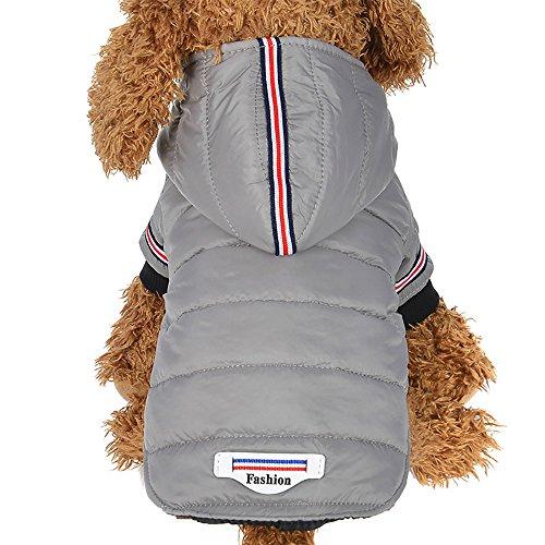 G-real Fashion Pet Dog Cat Hoodies 2 Legs Pet Clothes Cotton Puppy Winter Sweatshirt Warm Sweater Coat Jacket