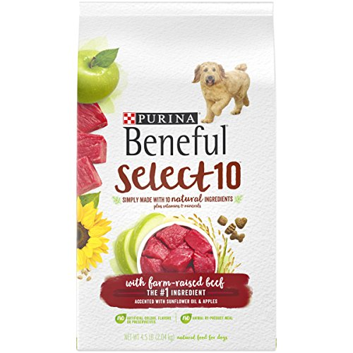 Beneful Select 10 Dry Dog Food with Beef (M)