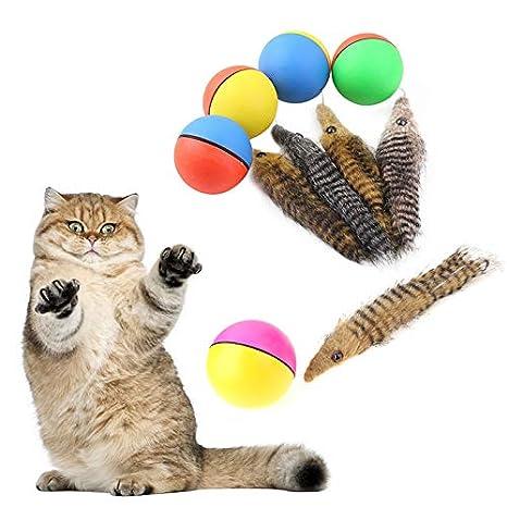 Outtybrave - Pelota para Mascotas, Juguete Divertido para Gato ...