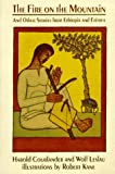 img - for The Fire on the Mountain, and Other Stories from Ethiopia and Eritrea (An Owlet Book) book / textbook / text book