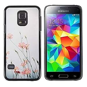 Paccase / SLIM PC / Aliminium Casa Carcasa Funda Case Cover para - Nature Flower Sky Field Summer - Samsung Galaxy S5 Mini, SM-G800, NOT S5 REGULAR!