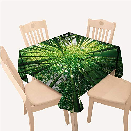 WilliamsDecor Nature Jacquard Tablecloth Upward Bamboo Stems in Jungle Rainforest Exotic Lush Tree Woodland Shadows PictureHunter Green Square Tablecloth W60 xL60 inch