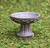 RSR E-V Cordovan Mini Bird Bath