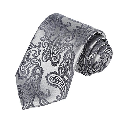 KissTies Mens Silver Gray Necktie Paisley Wedding Ties + Gift Box