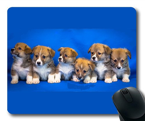 Lovely Pug Dog Gaming Mouse Pad,Welsh Corgi Pembroke Dog Puppy Animals Cute Pet,Dogs Mouse mat