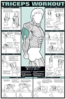 Triceps Workout 24 X 36 Laminated Chart