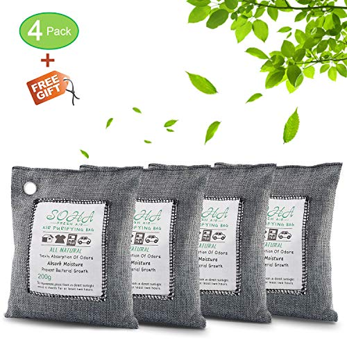 breathegreen charcoal bags buyer 39 s guide for 2019 axyco reviews. Black Bedroom Furniture Sets. Home Design Ideas