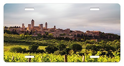 zaeshe3536658 Antique License Plate, MedievaCity of San Gimignano Tuscany Italy Ancient HistoricaArchitecture, High Gloss Aluminum Novelty Plate, 6 X 12 Inches, Green CoraDust
