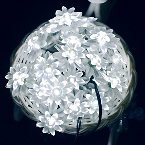 Aluvee Solar LED light string outdoor Christmas decoration Lotus Flower 19.7ft 30 LED Waterproof Outdoor Decoration Lighting for Indoor/Outdoor Patio Lawn Garden and Holiday Festivals (White)
