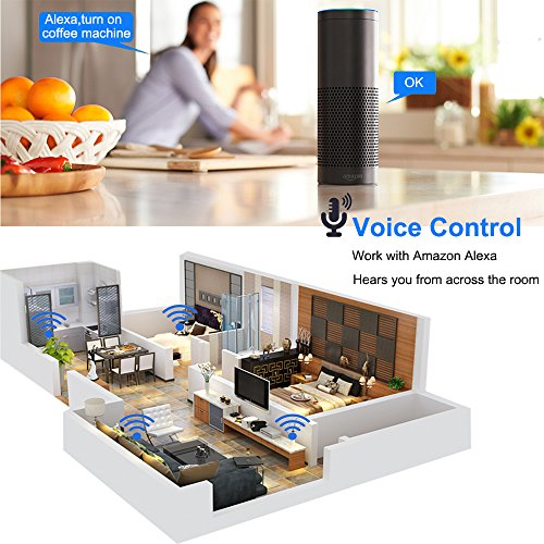 WiFi Smart Plugs, Mini Outlets Works with Voice Activated Alexa Echo and  Google Home Assistant Compatible with iOS/Android Smart Phones/Tablets