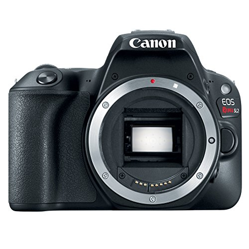 Canon-EOS-Rebel-SL2-Digital-Camera-and-Lens