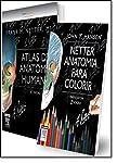Netter. Anatomia Humana + Colorir - Caixa