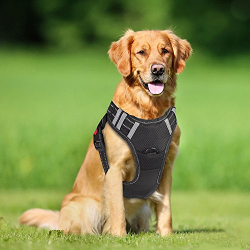 Greensen No Pull Dog Harness with Front Clip, Large Dog Adjustable Harness with 2 Metal D-Rings and Handle Reflective Padded Soft Vest for Outdoor Walking(L)