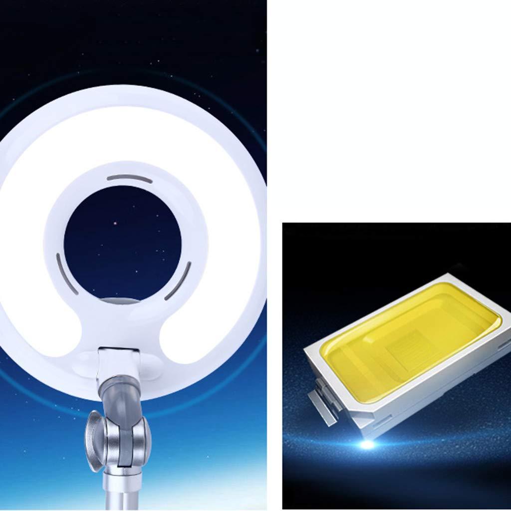 Lampada da terra orientabile a LED fredda luce cura dellocchio lente di bellezza regolabile lampada da terra regolabile salone di bellezza IT