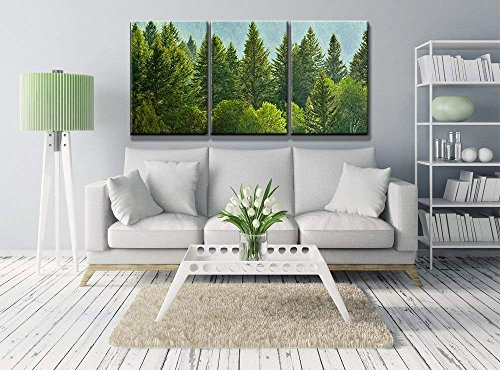 Forrest of Green Pine Trees on Mountainside with Rain x3 Panels