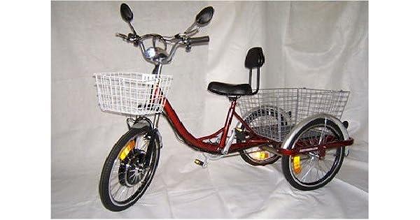 Amazon.com: Patinete eléctrico motorizado Trike Tricycle ...
