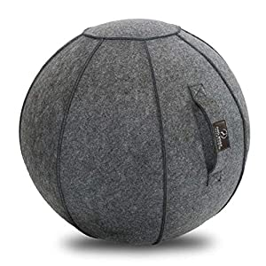 Well-Being-Matters 513aD8WSFgL._SS300_ ProBody Pilates Sitting Ball Chair with Handle for Home, Office, Pilates, Yoga, Stability and Fitness - Includes…
