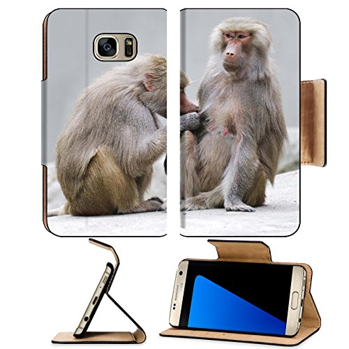 msd-premium-samsung-galaxy-s7-edge-flip-pu-leather-wallet-case-image-id-14744895-two-baboons-engaged