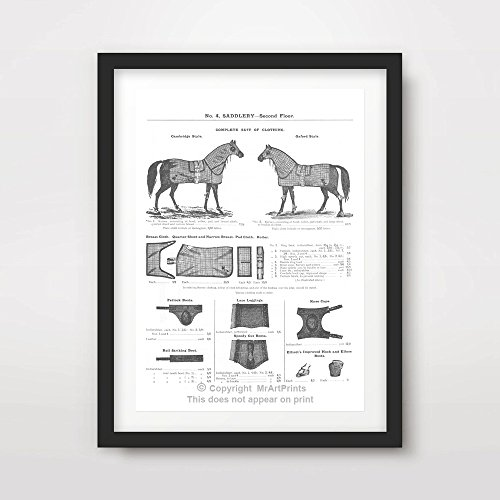 (HORSE RIDING EQUIPMENT CHART SADDLERY ILLUSTRATIONS ART PRINT Poster Vintage Victorian Antique Equestrian Home Decor Design Wall Picture A4 A3 A2 (10 Size Options) )