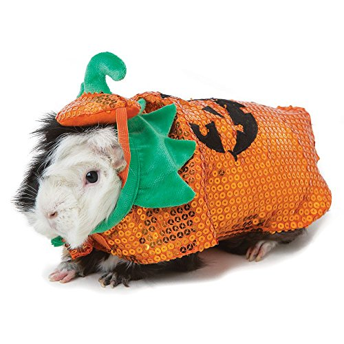 Thrills and Chills Collection Pumpkin Costume for $<!--$8.00-->