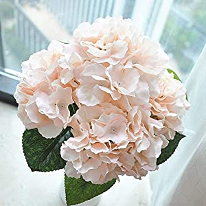 Jasion Artificial Flowers Hydrangeas Flowers 5 Big Heads Silk Bouquet for Office Home Party Decoration (Champagne) 4