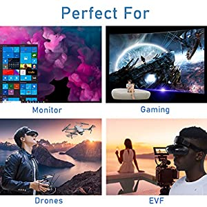 GOOVIS Young Head-Mounted Display, with HD M-OLED Display, Eye Protection Head-Mounted Diasplay Compatible with Laptop PC Xbox One Drone PS4 Nintendo Set-top Box Smartphone (Black) (Color: Black)